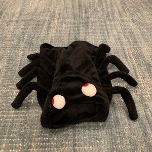 XS Spider Costume for Dog or Cat